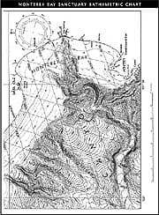 Monterey Bay Sanctuary Bathymetric Chart