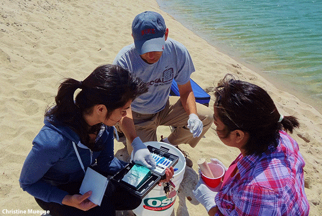 Image of Snapshot Day volunteers testing dissolved oxygen in the Carmel River in Carmel, California, by Christina Muegge