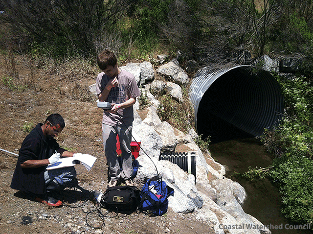 Image of Volunteers digitally record water temperature, pH, and dissolved oxygen at Carneros Creek in Watsonville, California by Coastal Watershed Council