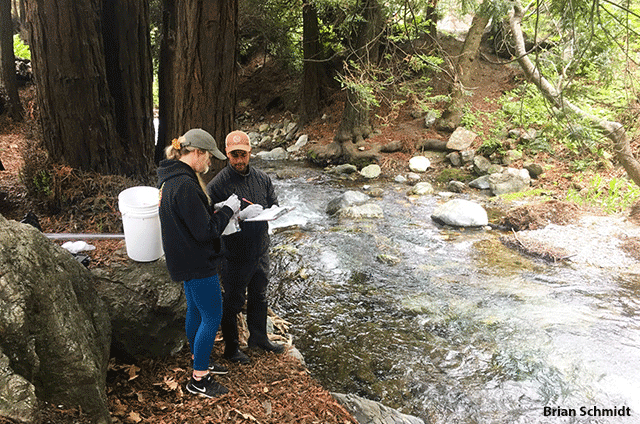 Image of Snapshot Day volunteers test pH and other field measurements as well as collect water samples from Limekiln Creek in Big Sur, CA. by Brian Schmidt