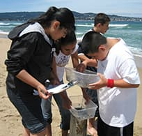 students learning through citizen science program limpets