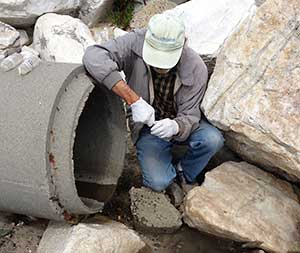 volunteer collecting a sample at Hopkins outfall in Pacific Grove, CA