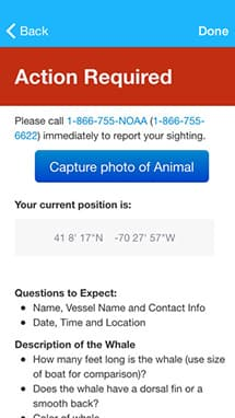 "screen shot of whale alert app showing ""take action"" page"