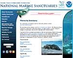 National Marine Sanctuary Photo Gallery
