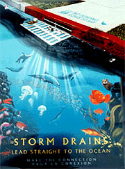storm drain poster