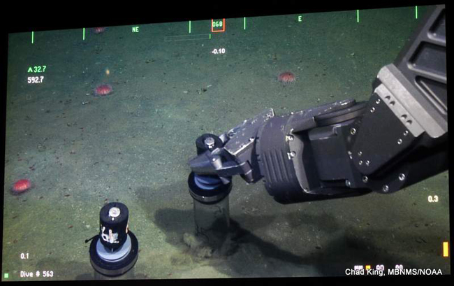 robotic arm of ROV Doc Rickets