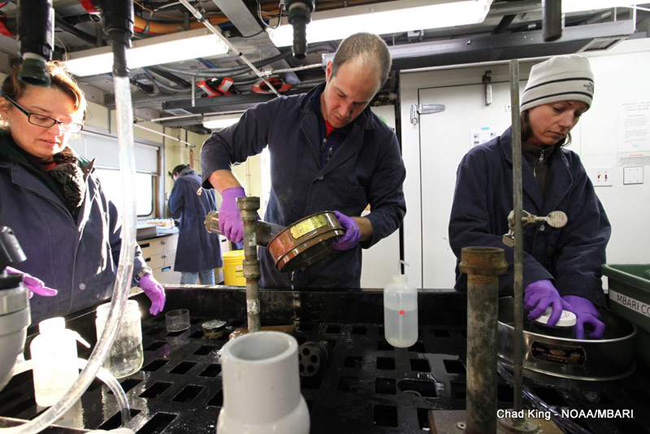 picture of scientists preparing sedement cores for future analyses
