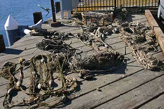 recovered marine debris on dock
