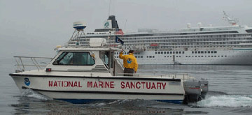 Sanctuary's Sharkcat monitors cruise ship
