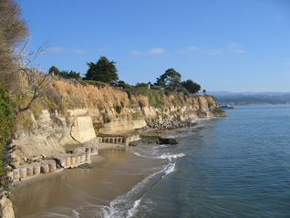 image of the Opal Cliffs in Santa Cruz