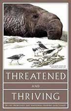 Poster Series: Threatened & Thriving